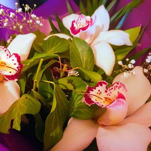 Студио за красота Орхидея